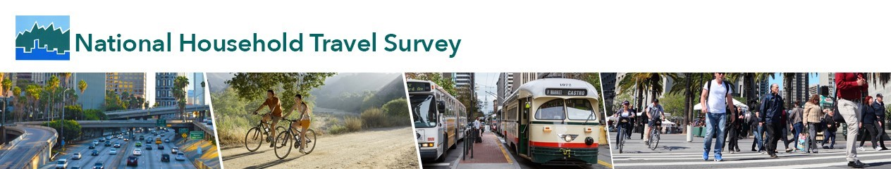 Image for National Household Travel Survey
